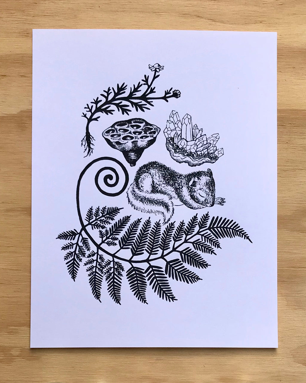 Fern the Sleepy Squirrel Print
