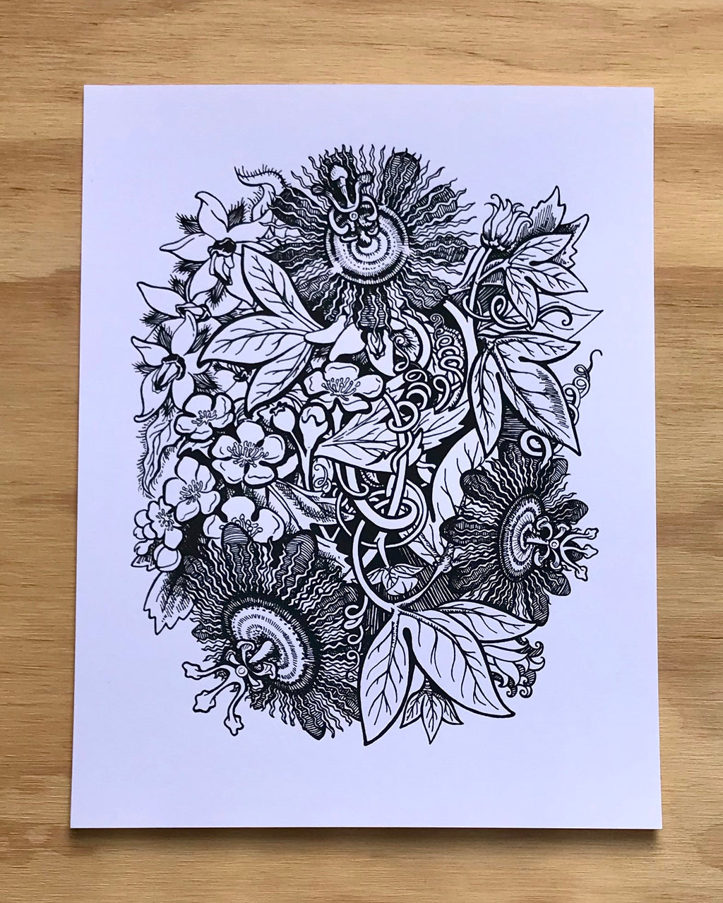 Herbal Power Trio Print