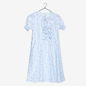 Blue Stripe Printed Frock Dress