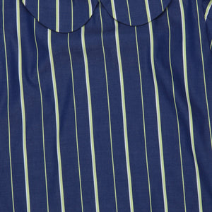 Green Stripe Frill Sleeve Blue Shirt Dress