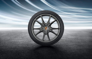 "20"" Carrera S Winter Wheel and Tire Set Painted in Platinum (satin-matte) - 991.II"