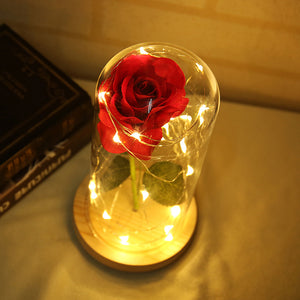 Beast Red Rose Falling Petals LED Glass Gift