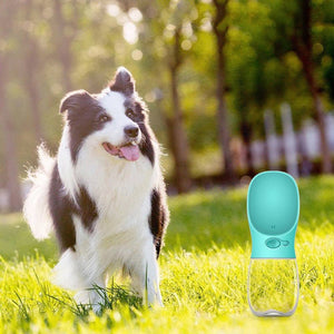 Portable Outdoor Doggy Bottle