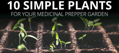 10 SIMPLE PLANTS FOR YOUR MEDICINAL PREPPER GARDEN