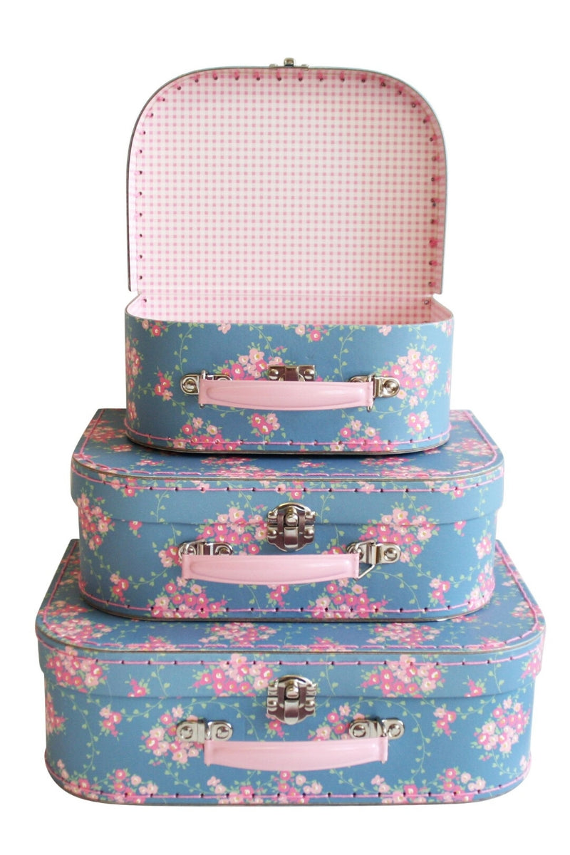 Carry Case Set Of 3 | Aqua Cottage