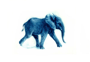 Elefant, jung blue - Kurt Meyer-Eberhardt