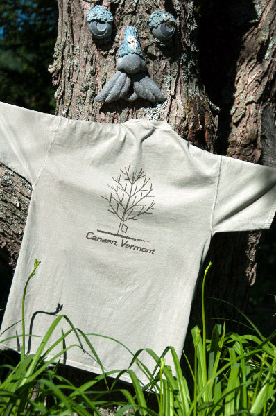 "Men's Fit T-Shirt – ""Vermont"""
