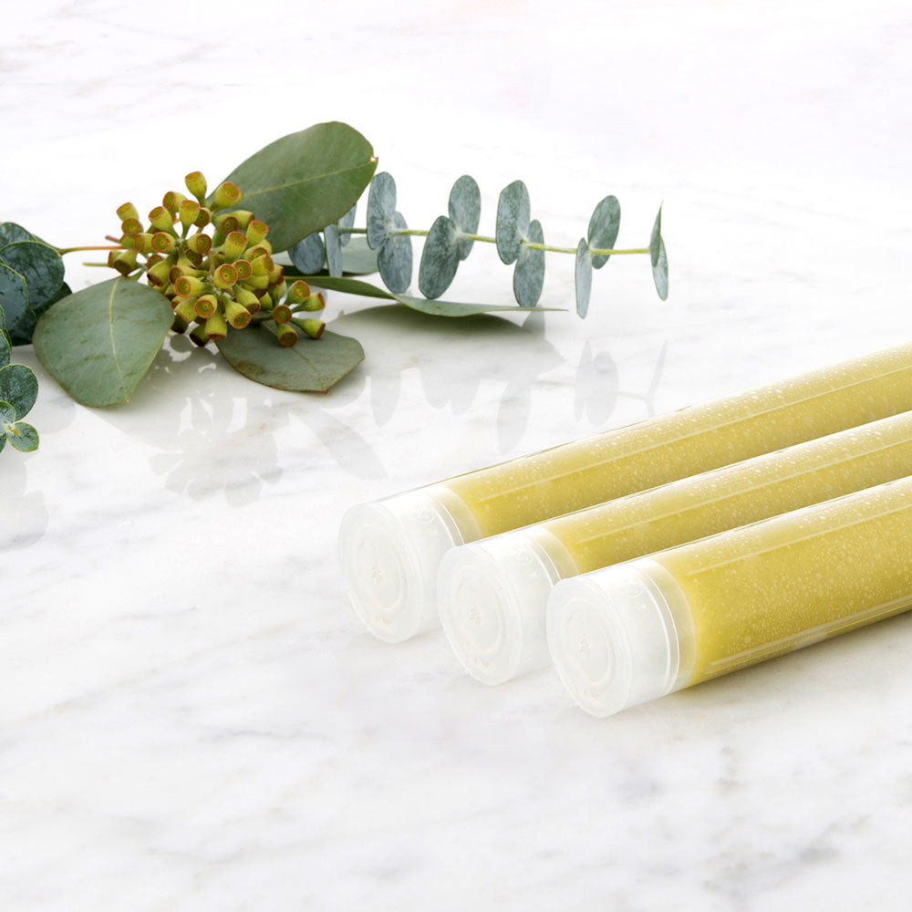 Handheld Vitamin C Cartridges (3 in 1)- Eucalyptus
