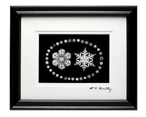 Snowflake Bentley Postcard Montage