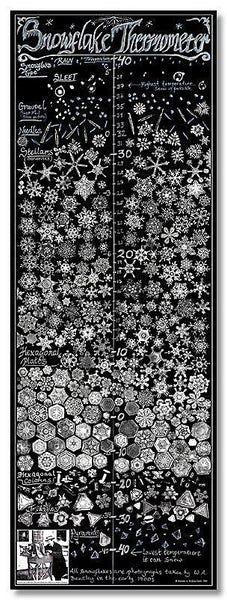 """Snowflake"" Thermometer Poster"