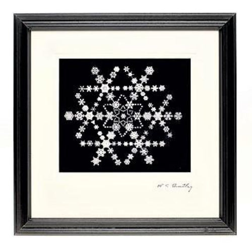 Snowflake Made of Snowflakes Montage