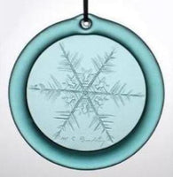 Teal Suncatcher