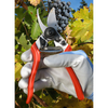 Forged Bypass Pruner