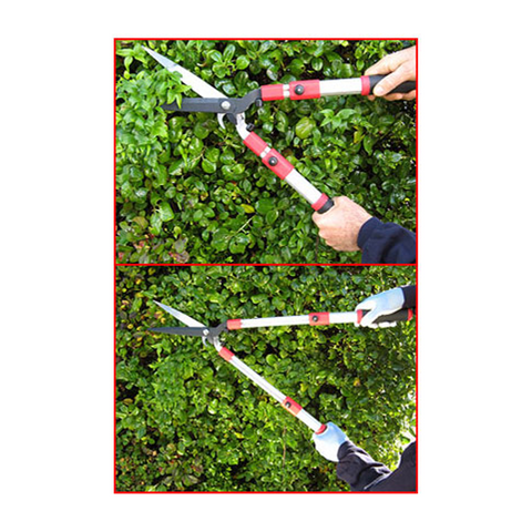 Telescopic Hedge Shears In Use