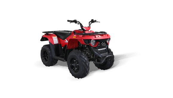 Bennche Gray Wolf 150 AUTOMATIC with Reverse ATV