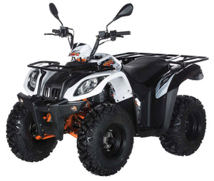 200 BULL UTILITY Automatic ATV with Reverse