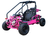 GK110 Automatic GO KART with Reverse