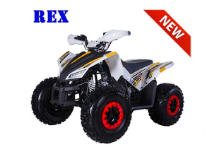 REX 120 ATV automatic with reverse