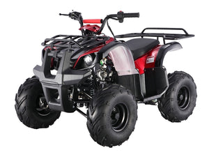 D125 Automatic ATV with Reverse