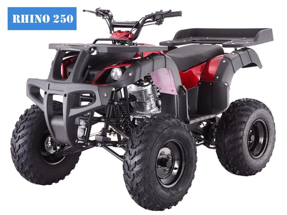 RHINO 250 Manual ATV with Reverse