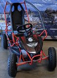 FURRY 800 WATT 36V ELECTRIC GO KART RED