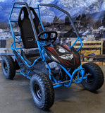 FURRY 800 WATT 36V ELECTRIC GO KART BLUE