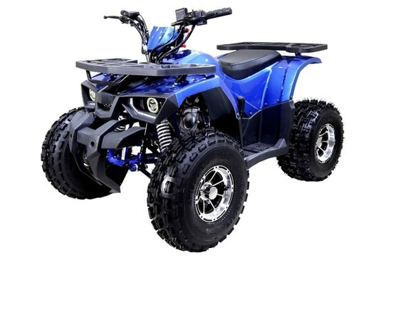 MUDHAWK 10 120cc AUTOMATIC ATV with REVERSE