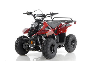 Kids/Youth MIKRO 110CC Automatic ATV