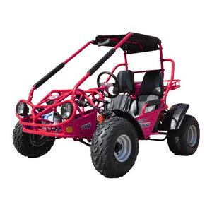 TM BOBCAT 150 XRS BUGGY