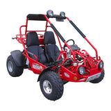 TM EAGLE 150 XRX GO KART BUGGY