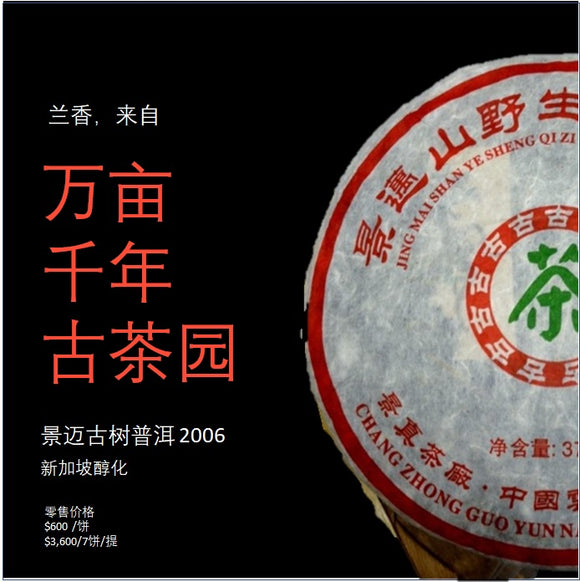 Mt. Jingmai Raw PuEr tea cake, ancient trees, 2006 Spring 景迈山 古树普洱生茶 - Old Village Puer 老寨古茶