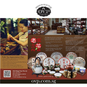 OVP Tea Appreciation Workshop - Old Village Puer 老寨古茶
