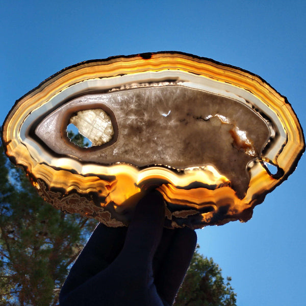 Agate slice.-The Crystal Connoisseurs