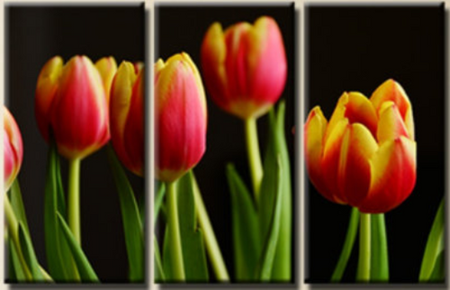 3 Pieces / 3 Panel Canvas Tulips Flowers  Office  Wall Art Print, Video Game Poster Canvas Art Painting Wall Decor Decoration Decal Mural