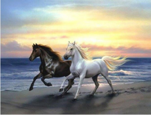 Large Diamond Painting kit Sunset Ocean Horses  Nature Mosaic Embroidery  rhinestone painting Cross Stitch Crystal Needlework Kids Activity