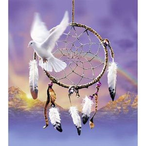 3D Large  Dream Catcher Pigeon  Diamond Painting kit DIY painting style Classical. Cross Stitch Crystal Needlework Embroidery.Diamond Mosaic.