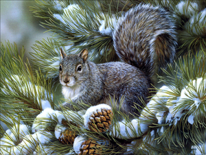 Diamond Painting kit  Squirrel Forest Nature  Mosaic  Embroidery  rhinestone painting Cross Stitch Crystal Needlework Kids Activity