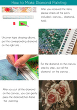 3D  Red Rose Flowers DIY Diamond Painting kit DIY painting style Classical. Cross Stitch Crystal Needlework Embroidery.Diamond Mosaic.