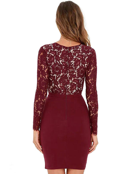 LaceShe Women's Plunge Neck Sexy Lace Dress
