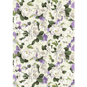 cristina re A4 Paper Belladonna Bouquet 5pk
