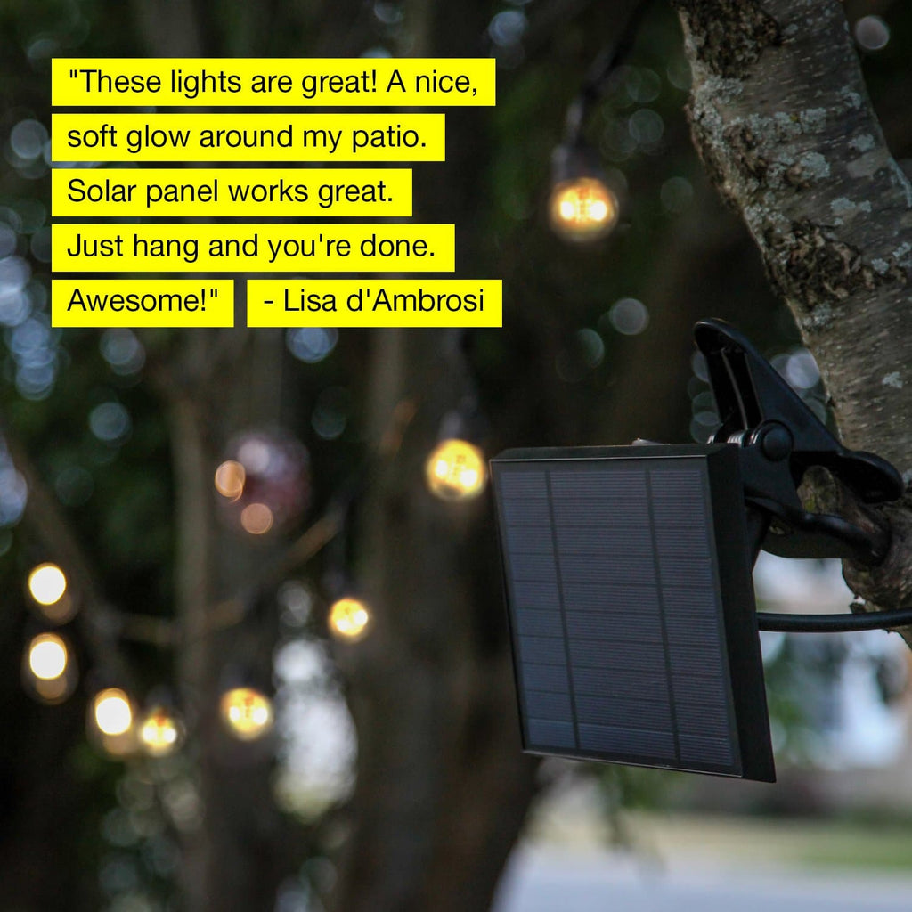 Warm white Ambience Pro Outdoor String Lights: Solar Globe Gazebo Hanging Edison