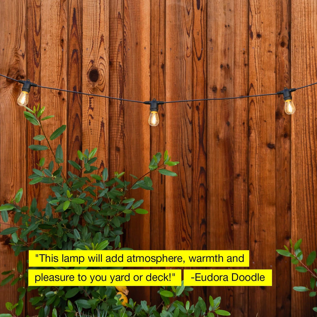 Ambience Pro Filament 2W - Waterproof LED Outdoor String Lights - 48 Ft Ambience Pro Outdoor String Lights: LED Waterproof Edison Vintage