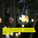 Soft white Ambience Pro Outdoor String Lights: Solar Globe Gazebo Hanging Edison