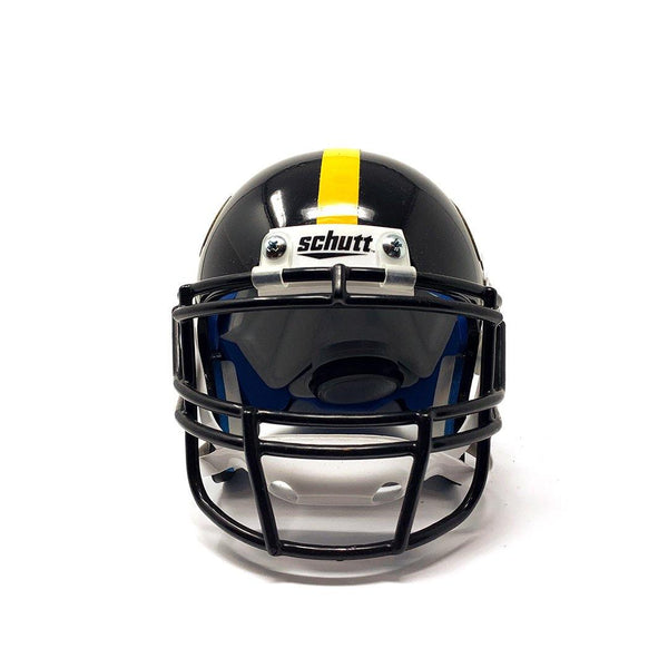 Iowa Hawkeyes College Football Collectible Schutt Mini Helmet - Picture Inside - FANZ Collectibles