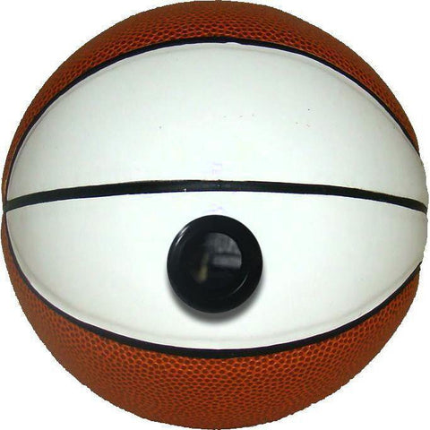 Miniature Basketball - Picture Inside - FANZ Collectibles