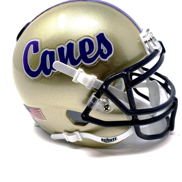 Cartersville Hurricanes HS Mini Football Helmet - Picture Inside - FANZ Collectibles