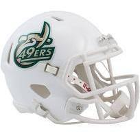 Charlotte 49ers College Football Collectible Schutt Mini Helmet - Picture Inside - FANZ Collectibles