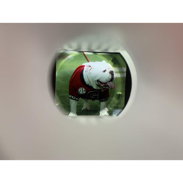 Mini Helmet with personalized photo inside