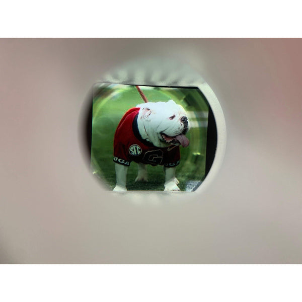 UGA Personalized mini helmet /w your photo inside