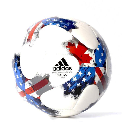 Soccer Ball Miniature - Picture Inside - FANZ Collectibles